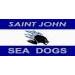 Sea Dogs flag